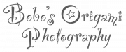 Bobo's Origami Photography